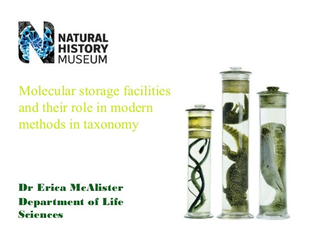 Molecular storage facilities and their role in modern methods in taxonomy  Dr Erica McAlister Department of Life Sciences