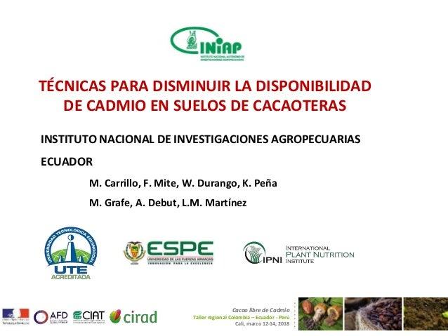 TÉCNICAS PARA DISMINUIR LA DISPONIBILIDAD DE CADMIO EN SUELOS DE CACAOTERAS INSTITUTO NACIONAL DE INVESTIGACIONES AGROPECU...