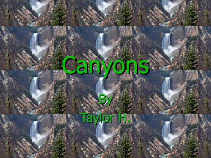 Canyons By Taylor H.