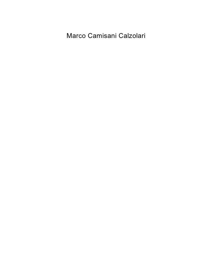 Marco Camisani Calzolari     Entro il 2012  il 44% della popolazione    mondiale  sarà online.