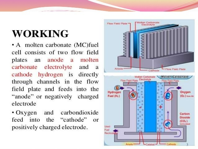molten carbonate fuel cell