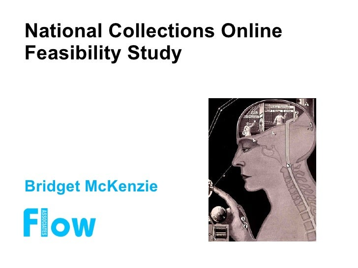National Collections Online Feasibility Study Bridget McKenzie