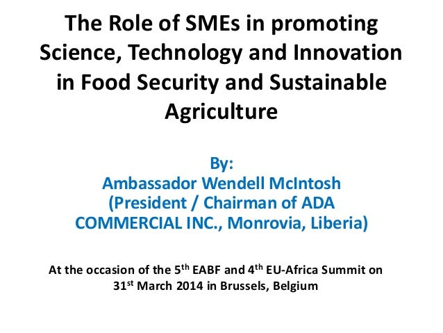 The Role of SMEs in promoting Science, Technology and Innovation in Food Security and Sustainable Agriculture By: Ambassad...
