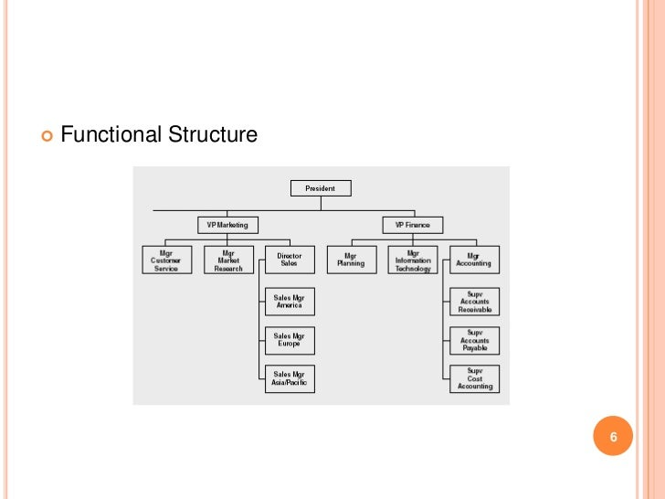    Functional Structure                           6