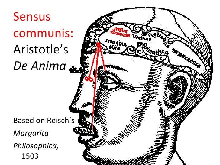 <ul><li>Based on Reisch's </li></ul><ul><li>Margarita  </li></ul><ul><li>Philosophica, 1503 </li></ul>Sensus  communis:   ...