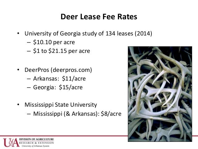 Dr  Becky McPeake - Hunting Lease DOs and DON'Ts