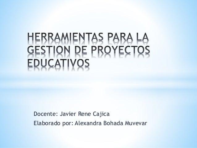 Docente: Javier Rene Cajica Elaborado por: Alexandra Bohada Muvevar