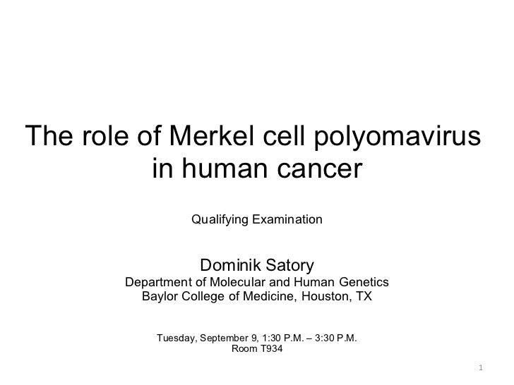 The role of Merkel cell polyomavirus  in human cancer Qualifying Examination Dominik Satory Department of Molecular and Hu...