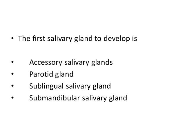 • The first salivary gland to develop is • Accessory salivary glands • Parotid gland • Sublingual salivary gland • Submand...