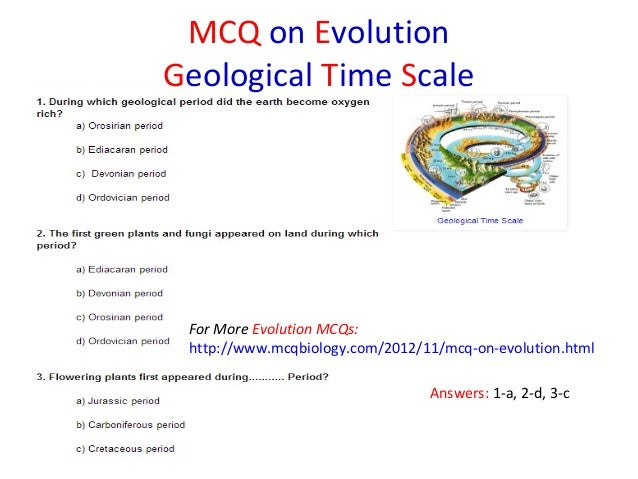 geologic time scale questions worksheet