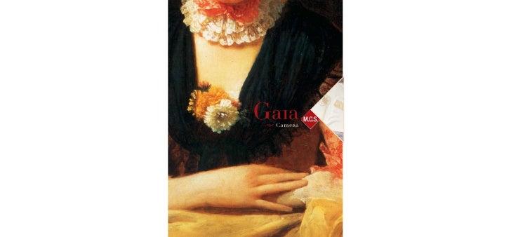 Gaia  Camera