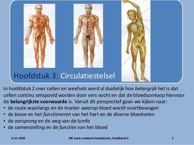 8-11-2010 1MC-toets medische basiskennis, Hoofdstuk 3 Hoofdstuk 3: Circulatiestelsel In hoofdstuk 2 over cellen en weefsel...