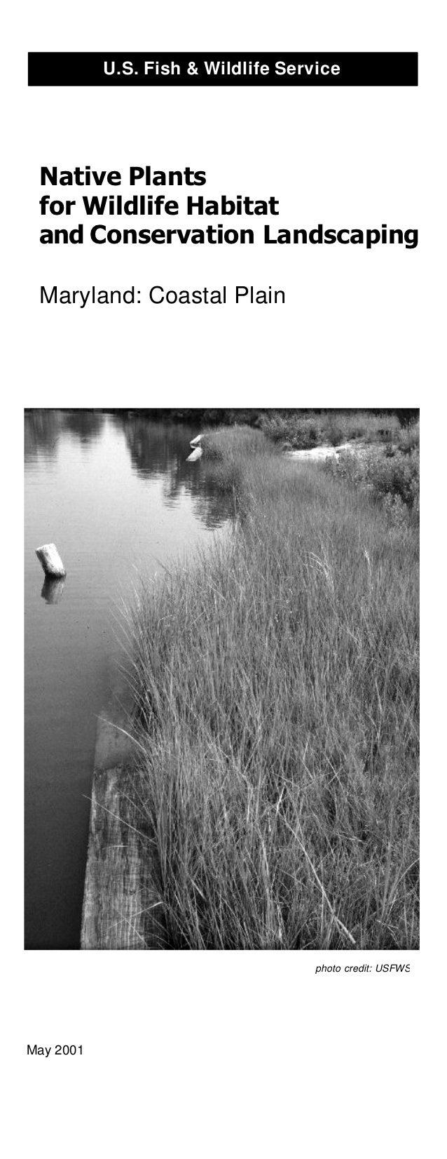 U.S. Fish & Wildlife Service Native Plants for Wildlife Habitat and Conservation Landscaping Maryland: Coastal Plain      ...