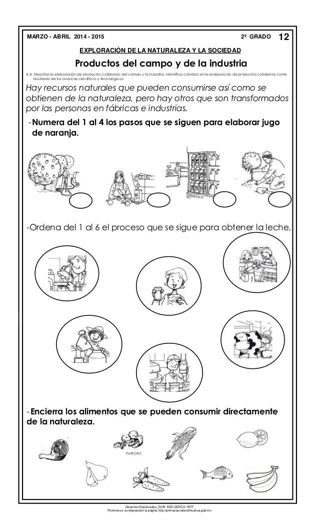 Asombroso Herramientas Para Colorear La Hoja Colección - Dibujos ...
