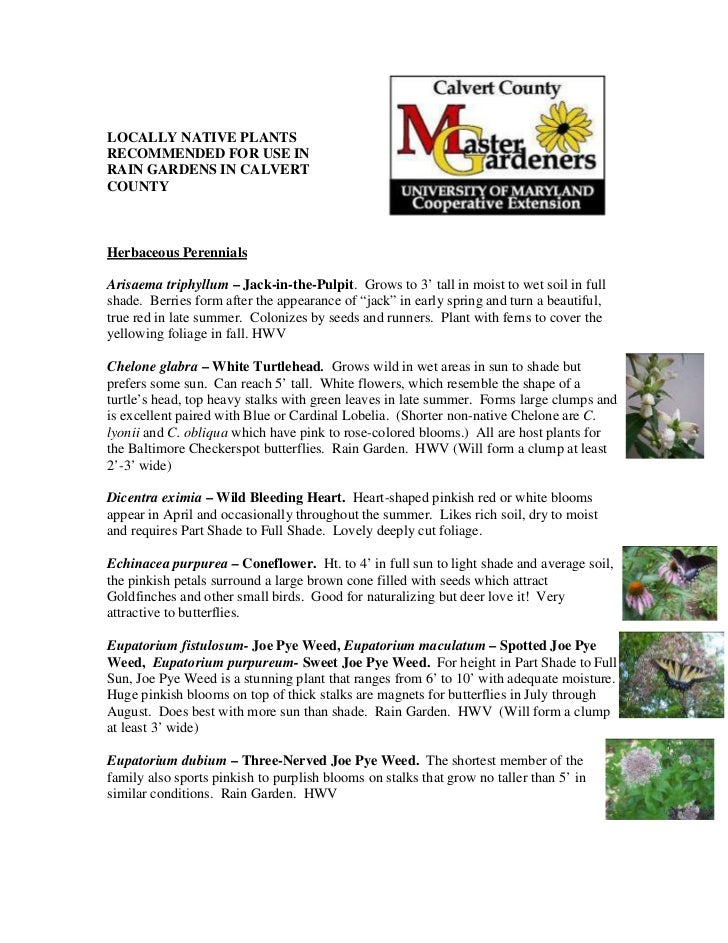 LOCALLY NATIVE PLANTSRECOMMENDED FOR USE INRAIN GARDENS IN CALVERTCOUNTYHerbaceous PerennialsArisaema triphyllum – Jack-in...