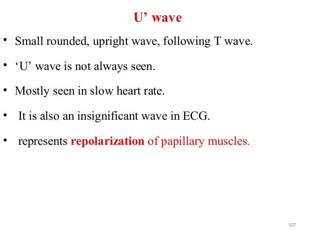 U' wave • Small rounded, upright wave, following T wave. • 'U' wave is not always seen. • Mostly seen in slow heart rate. ...