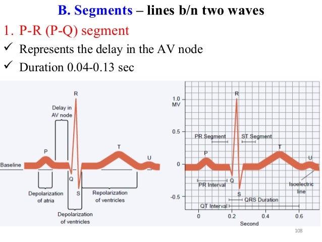 B. Segments – lines b/n two waves 1. P-R (P-Q) segment  Represents the delay in the AV node  Duration 0.04-0.13 sec 108
