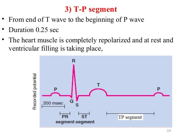 3) T-P segment • From end of T wave to the beginning of P wave • Duration 0.25 sec • The heart muscle is completely repola...