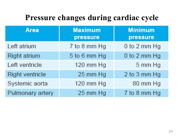 Pressure changes during cardiac cycle 174