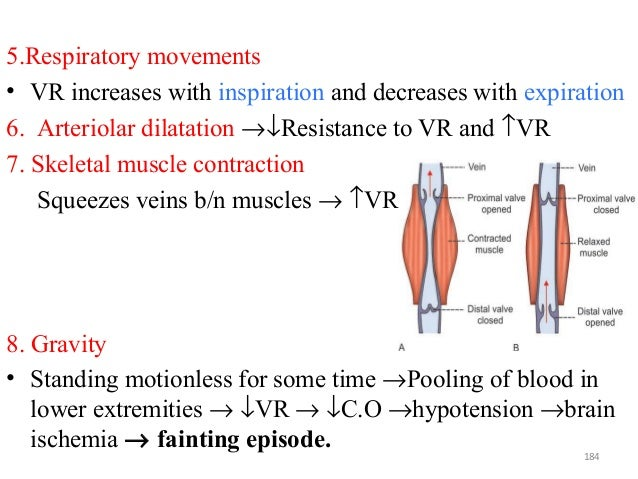 5.Respiratory movements • VR increases with inspiration and decreases with expiration 6. Arteriolar dilatation →↓Resistanc...
