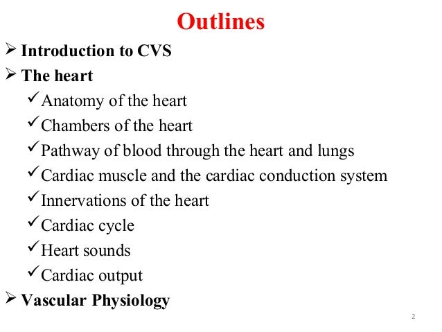 Outlines  Introduction to CVS  The heart Anatomy of the heart Chambers of the heart Pathway of blood through the hear...