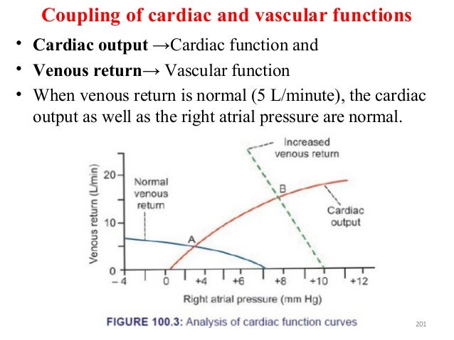 Coupling of cardiac and vascular functions • Cardiac output →Cardiac function and • Venous return→ Vascular function • Whe...