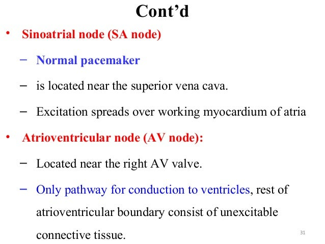 Cont'd • Sinoatrial node (SA node) – Normal pacemaker – is located near the superior vena cava. – Excitation spreads over ...