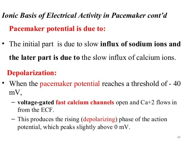 Ionic Basis of Electrical Activity in Pacemaker cont'd Pacemaker potential is due to: • The initial part is due to slow in...