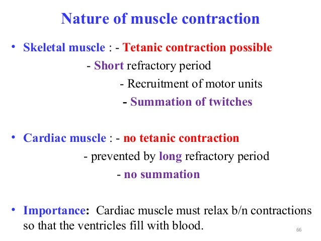 Nature of muscle contraction • Skeletal muscle : - Tetanic contraction possible - Short refractory period - Recruitment of...