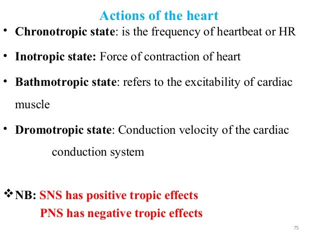 Actions of the heart • Chronotropic state: is the frequency of heartbeat or HR • Inotropic state: Force of contraction of ...