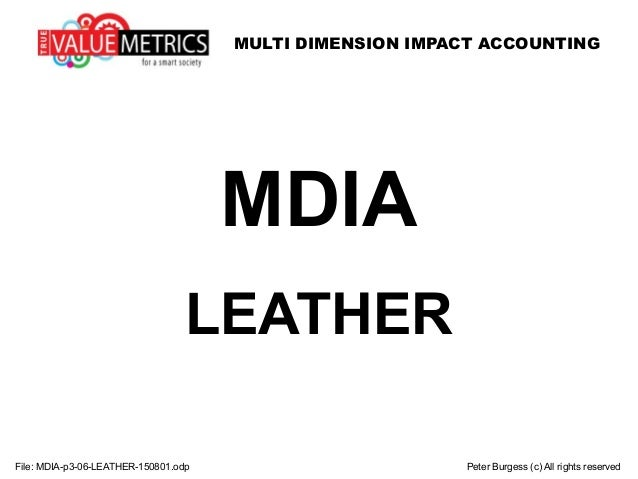 MULTI DIMENSION IMPACT ACCOUNTING File: MDIA-p3-06-LEATHER-150801.odp Peter Burgess (c) All rights reserved MDIA LEATHER