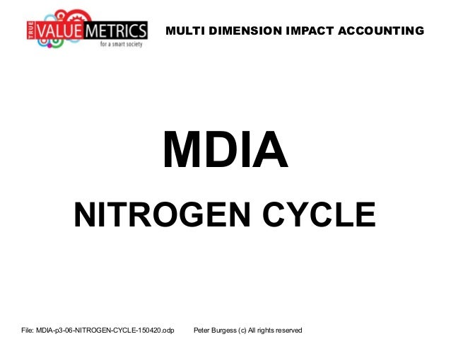 MULTI DIMENSION IMPACT ACCOUNTING File: MDIA-p3-06-NITROGEN-CYCLE-150420.odp Peter Burgess (c) All rights reserved MDIA NI...