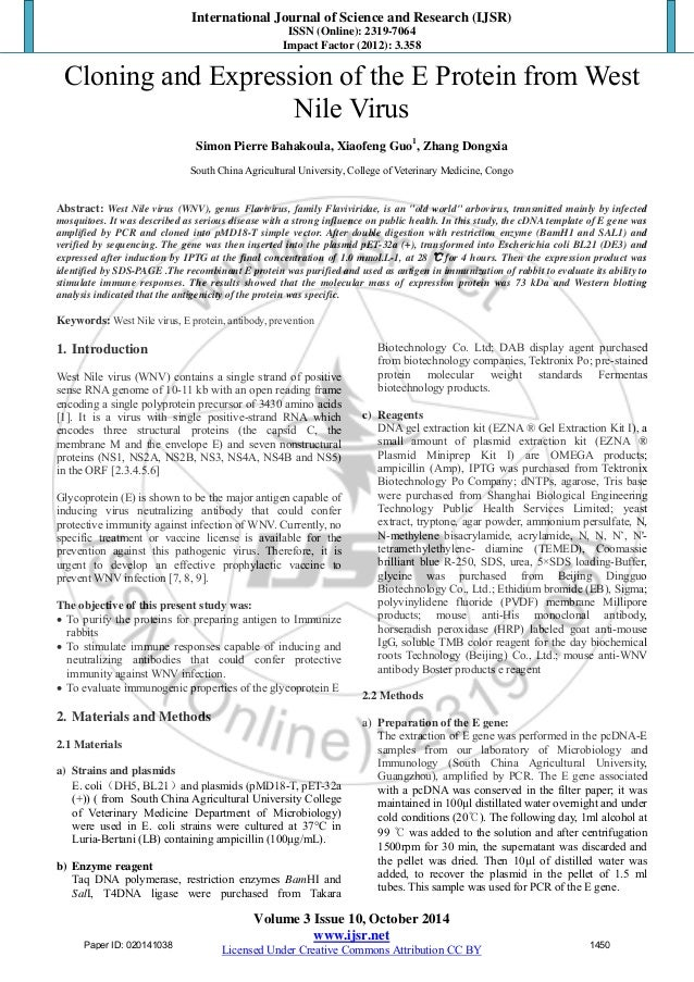 business essay samples band 8 pdf
