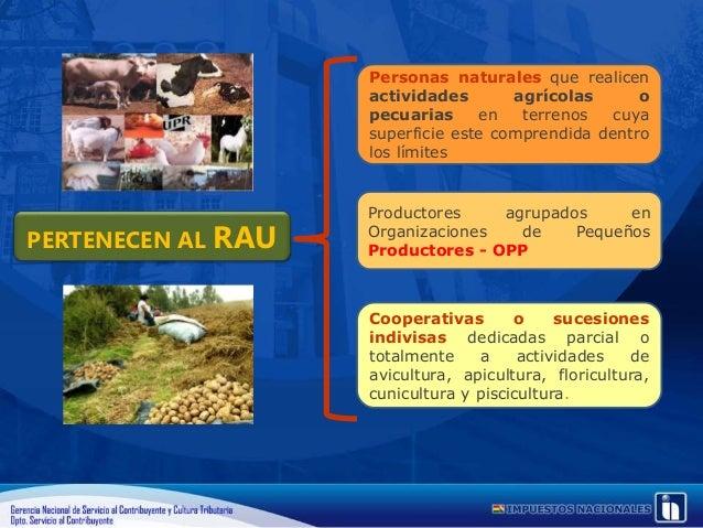 RÉGIMEN AGROPECUARIO UNIFICADO CUOTAS FIJAS POR HECTÁREA ZONAS Y SUBZONAS LÍMITES (Hectáreas) ZONA ALTIPLANO Y PUNA DESDE ...