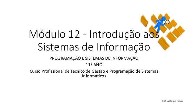 Módulo 12 - Introdução aos Sistemas de Informação PROGRAMAÇÃO E SISTEMAS DE INFORMAÇÃO 11º ANO Curso Profissional de Técni...