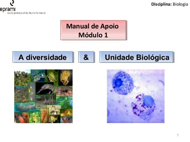 Disciplina: Biologia  Manual de Apoio Manual de Apoio Módulo 1 Módulo 1 A diversidade A diversidade  Técnico de Termalismo...