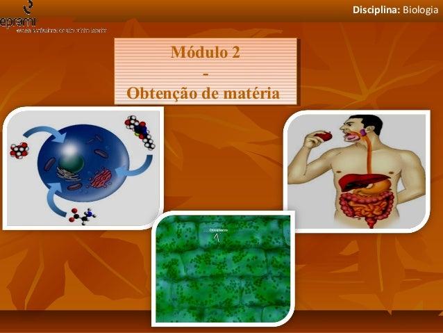 Disciplina: Biologia  Módulo 2 Módulo 2 -Obtenção de matéria Obtenção de matéria
