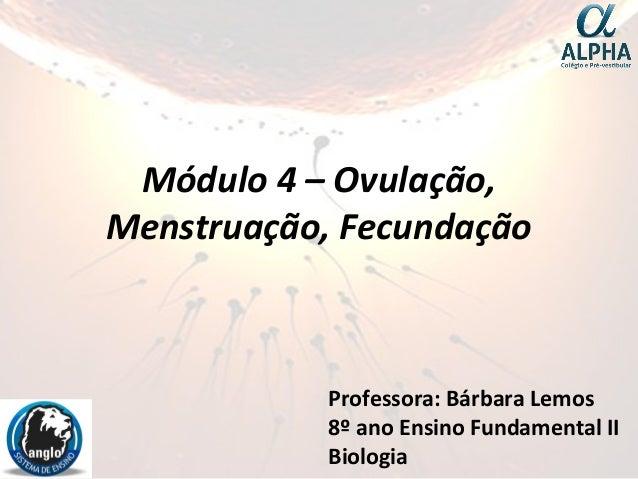 Módulo 4 – Ovulação, Menstruação, Fecundação Professora: Bárbara Lemos 8º ano Ensino Fundamental II Biologia