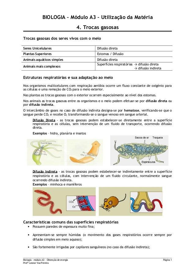 BIOLOGIA – Módulo A3 – Utilização da Matéria4. Trocas gasosasTrocas gasosas dos seres vivos com o meioSeres Unicelulares D...
