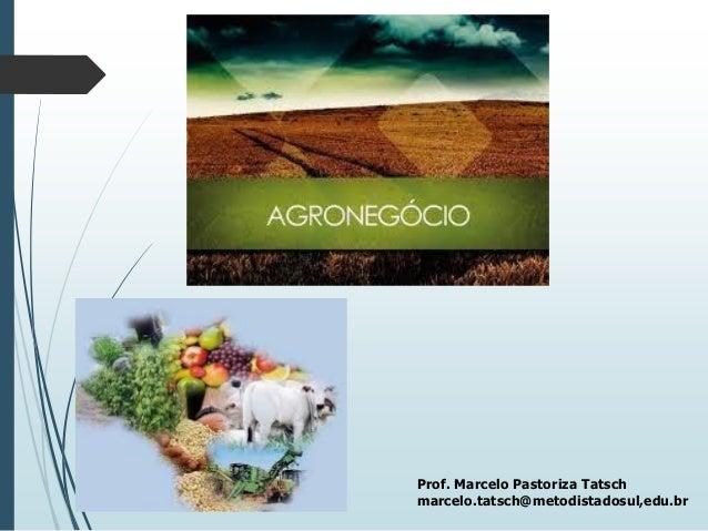 Prof. Marcelo Pastoriza Tatsch marcelo.tatsch@metodistadosul,edu.br