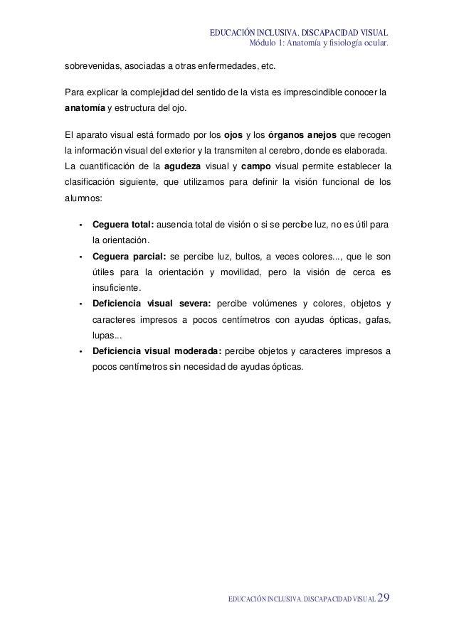 Hermosa Anatomía Visual Y La Fisiología Banco De Pruebas Ornamento ...