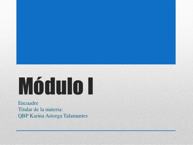 Módulo IEncuadre Titular de la materia: QBP Karina Astorga Talamantes