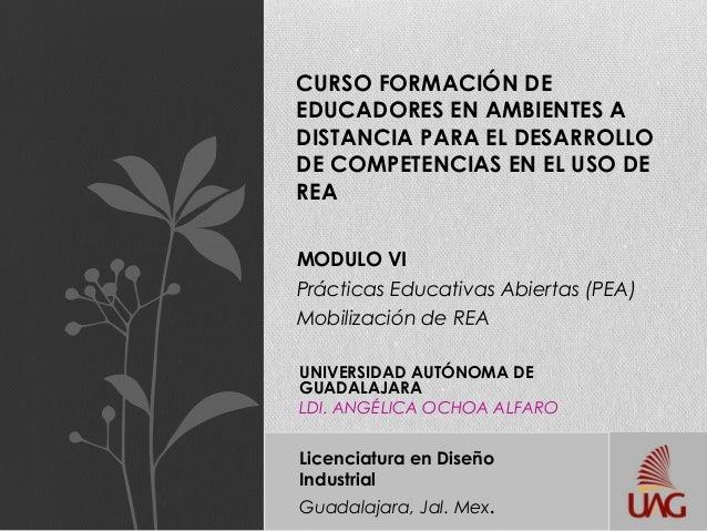 MODULO VIPrácticas Educativas Abiertas (PEA)Mobilización de REACURSO FORMACIÓN DEEDUCADORES EN AMBIENTES ADISTANCIA PARA E...