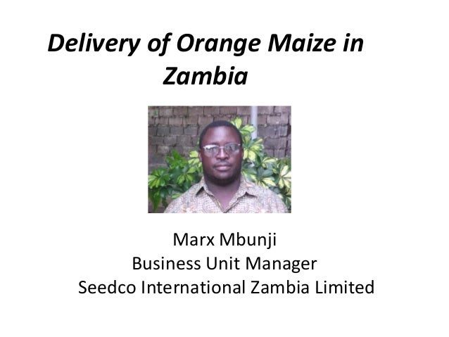 Delivery of Orange Maize in Zambia Marx Mbunji Business Unit Manager Seedco International Zambia Limited