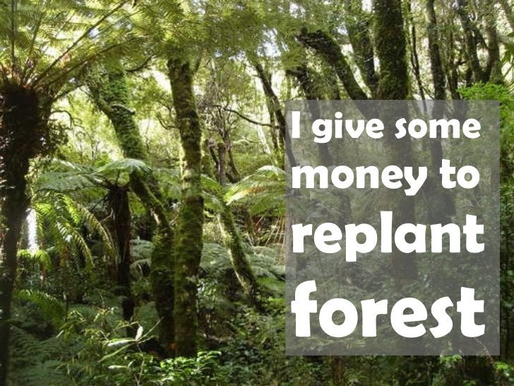 I give some  money to   replant  forest