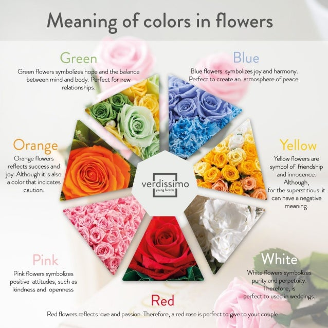 Meaning Of Colors In Flowers