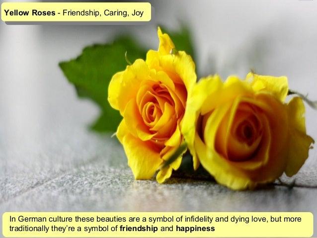 Yellow flowers symbolize choice image flower decoration ideas yellow flowers symbolize image collections flower decoration ideas yellow flowers symbolize gallery flower decoration ideas yellow mightylinksfo