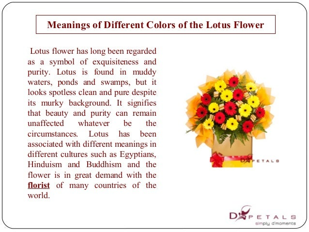 meanings of different colors of the lotus flower, Natural flower
