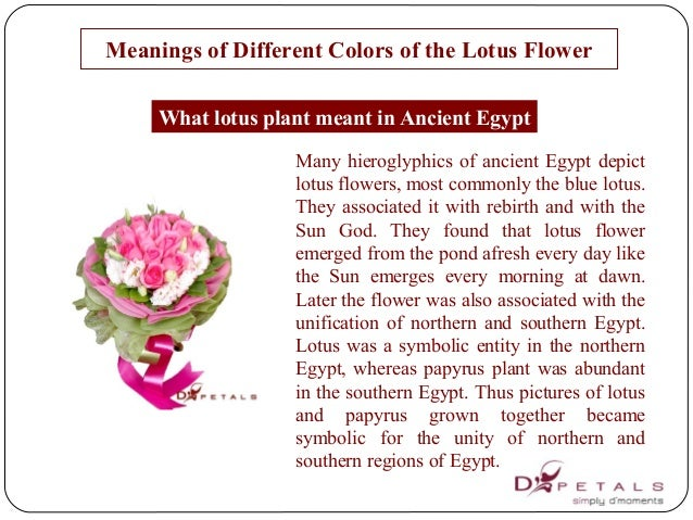Meanings Of Colors meanings of different colors of the lotus flower