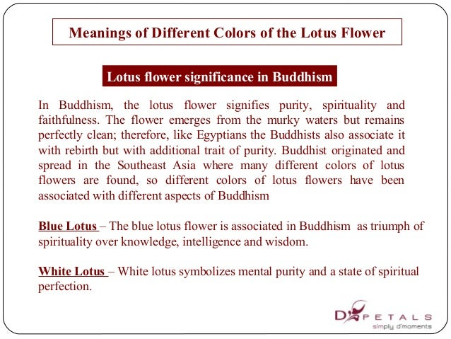 List Of Synonyms And Antonyms Of The Word Lotus Flower Buddhist Meaning